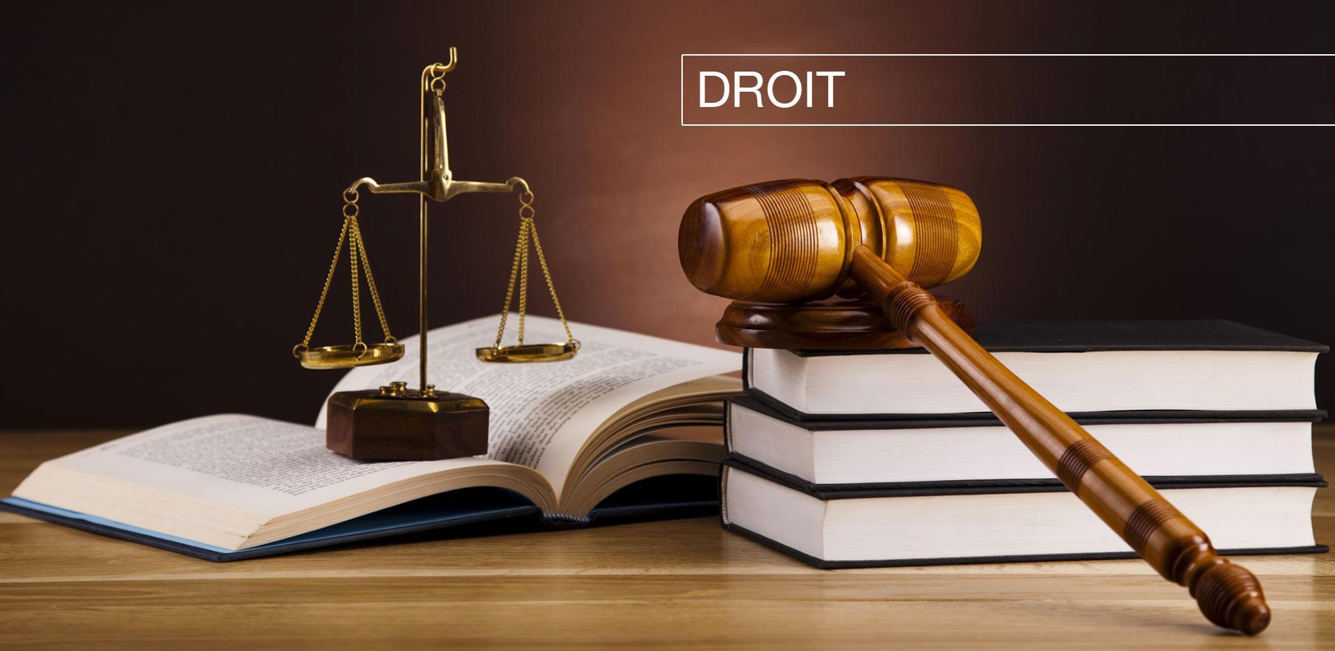 Traduction dans le domaine du droit
